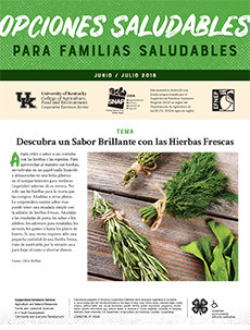 June / July 2018 Healthy Choices Newsletter Spanish