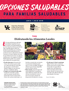 June / July 2019 Healthy Choices Newsletter Spanish