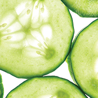 Creamy Cucumber and Chicken Salad