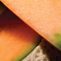 Glazed Cantaloupe Bread - Plate it Up! Kentucky Proud
