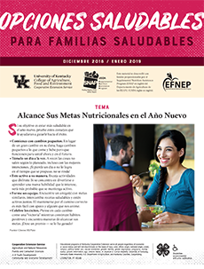 December 2018 / January 2019 Healthy Choices Newsletter Spanish