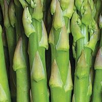 Asparagus Ham Quiche - Plate it Up! Kentucky Proud