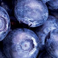 Big Blue Muffins