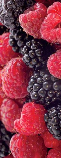 brambleberries