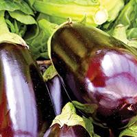 Easy Cheesy Eggplant - Plate it Up! Kentucky Proud