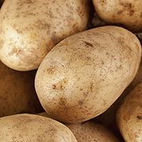 Fiesta Potatoes - Plate it Up Kentucky Proud!
