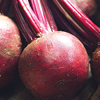 Roasted Root Vegetables - Plate it Up! Kentucky Proud