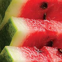 Watermelon Salsa - Plate it Up! Kentucky Proud